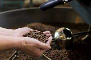 Pražení kávy